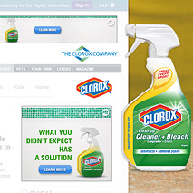 Clorox - Cleaner & Bleanch